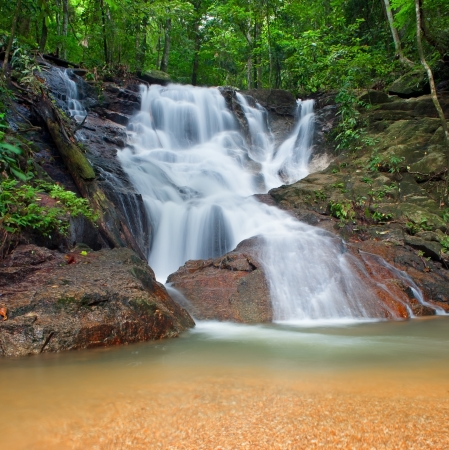 Wild jungle forest and scenery waterfall cascade with tropical plants  Nature background of Thailand evergreen national park photo