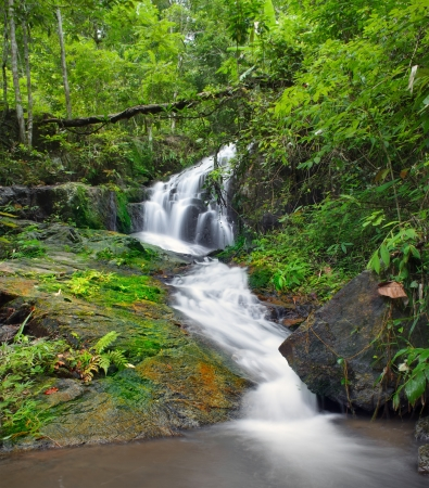 Waterfall background in jungle forest photo