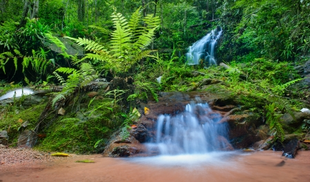 Jungle background, mountain creek HDR photography  Deep rain forest in Thailand  photo