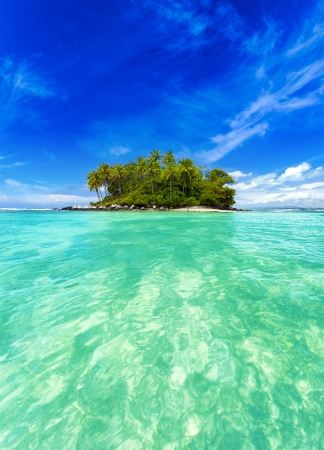 Tropical island with exotic green plants and coconut trees in clear sea water.