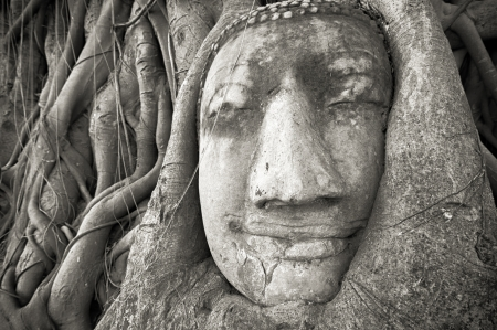 ayutthaya: Buddha head in tree roots at Wat Mahathat, Ayutthaya, Thailand  Ancient stone face sculpture in Asia  Famous travel destination