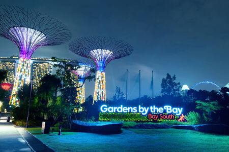 marina bay sand: Gardens by the Bay or SuperTree Grove in Singapore  Night view of famous tourist travel destination