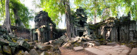 ficus: Angkor Wat Cambodia. Ta Prom Khmer ancient Buddhist temple in jungle forest. Famous landmark, place of worship and popular tourist travel destination in Asia.