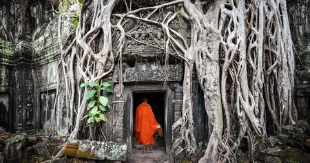 ficus: Monk in Angkor Wat Cambodia. Ta Prohm Khmer ancient Buddhist temple in jungle forest. Famous landmark, place of worship and popular tourist travel destination in Asia. Stock Photo
