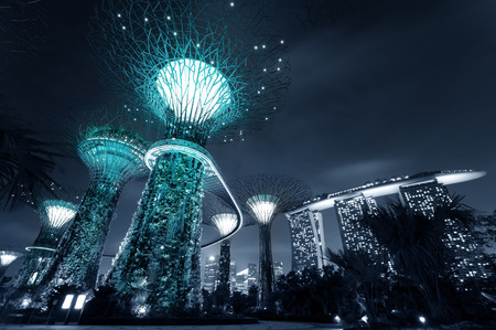 Gardens by the Bay or SuperTree Grove in Singapore. Night view of famous tourist travel destination