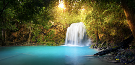 Exotic background of beautiful jungle forest with majestic waterfall falling into blue water lake and sun light rays shining through green leaves of tropical plants ant trees. Rainforest panorama