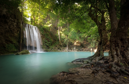 pond: Sunlight beams and rays shine through leaves of trees in tropical rainforest park in Thailand with beautiful waterfall falling in clear pond and old big tree on foreground