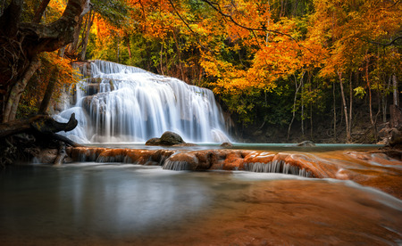 Orange autumn leaves on trees in forest and mountain river flows through stones and waterfall cascades Stock Photo
