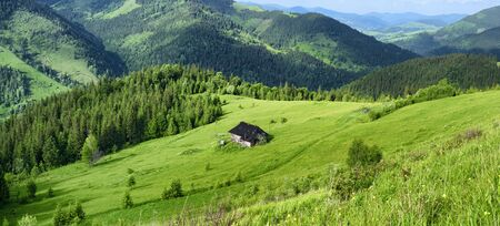 Carpathian mountains green hills nature background. Ukraine rural countryside
