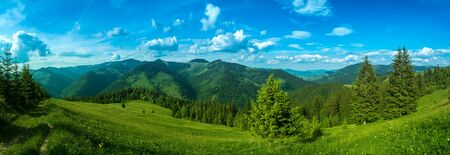 Pure clean air of alpine meadow beautiful panorama.