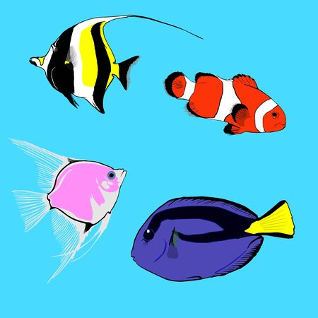 Set of various marine, tropical fish. Consists of parrot, surgeon fish, angel fish and Moorish idol. Fish can be used in animations, patterns for packing and icons. Vector. Modern style.