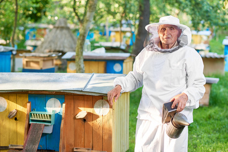 Senior beekeeper working at his apiary