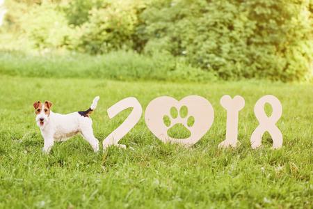 calendario diciembre: Perro feliz adorable del terrier de zorro en el parque 2018 greetin del Año Nuevo Foto de archivo