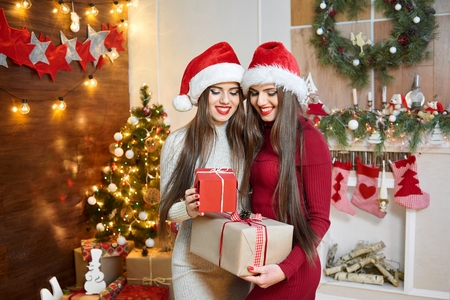 Beautiful twins in Christmas outfits
