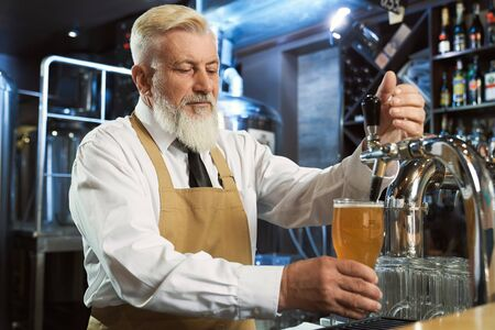Handsome, bearded, elderly barman standing at bar counter. Bartender in white shirt, tie, brown apron pouring in cold glass lager beer.