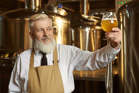 Front view of clever professional man in white shirt and apron keeping glass and looking at light beer. Man brewing alcohol and examining quality of drink. Concept of job and brewery. 版權商用圖片