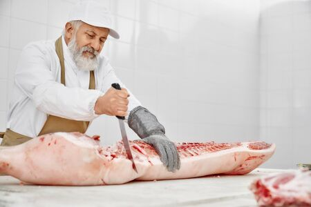Elderly butcher cutting pork carcass with knife on table. Handsome worker with beard in white uniform, white cap, brown apron and special gloves working on manufactury with raw meat.