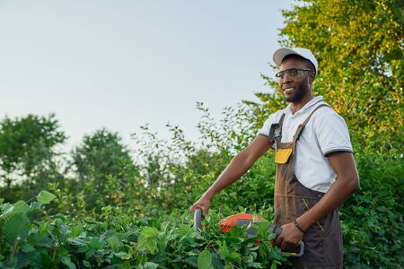 Smiling afro american man in brown overall and protective glasses cutting outgrown bushes into ordered shape during sunny days. Competent male worker using hedge trimmer for gardening.
