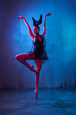 Beautiful wet ballerina in black lingerie and ears, ballet shoes dancing with hand up, loft interior. Young artist standing on socks. Isolated on blue studio background with rain and red light. Stockfoto