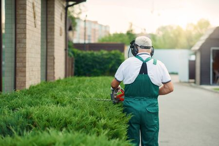 Unrecognizable senior worker with grey beard wearing uniform, ear and face protection cutting top of overgrown bushes using electric trimming machine. Back view of eldery man landscaping.