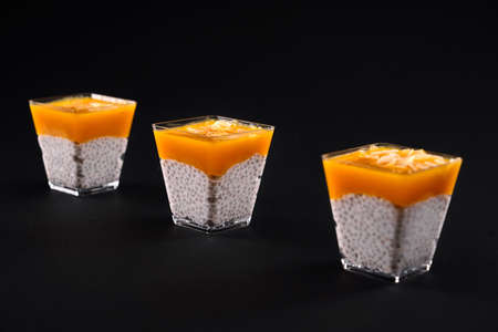 Front view of fresh pudding with natural organic soya milk, chia seeds and mango puree on topping. Closeup of cool dessert decorated with coconut slices, isolated on black background. Reklamní fotografie