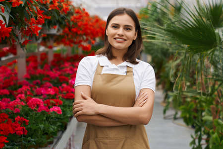 Beautiful young woman with brown hair holding hands crossed while posing at greenhouse. Smiling florist in beige apron working with various colorful flowers. 版權商用圖片