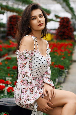 Attractive young woman in stylish summer dress posing among colorful flowers at orangery. Female model with dark curly hair sitting at looking at camera. 版權商用圖片