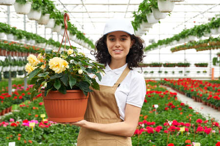 Portrait of attractive young woman in white cap and beige apron posing at greenhouse with flower pot in hands. Concept of people, work and horticulture.