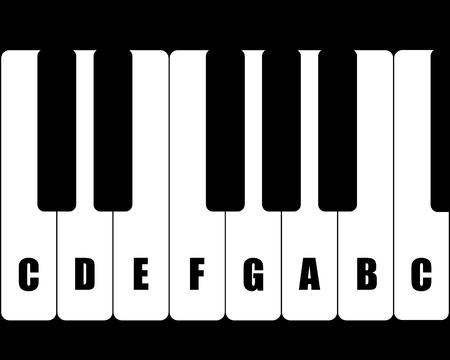 Alle waarden muziektonen geïsoleerd op een witte achtergrond. Vector illustratie.