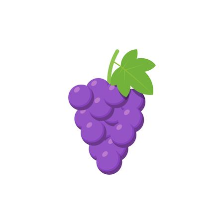 Purple Grapes isolated on white background. Vector illustration.