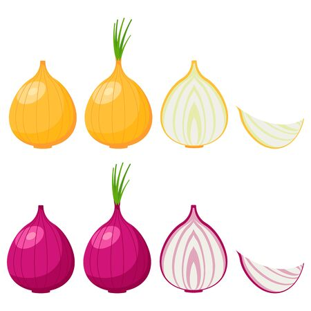 Onion icon set isolated on white background. Vector illustration. Eps 10.