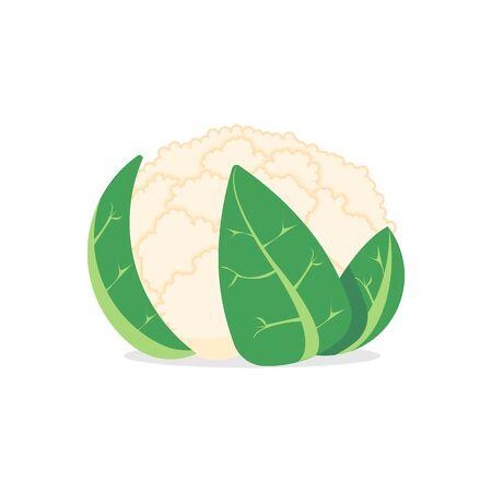 cauliflower isolated on white background.