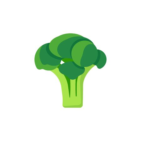 broccoli isolated on white background. Vector illustration. Eps 10.