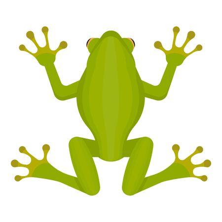 Green frog isolated on white background. Vector illustration. Eps 10. Imagens - 148096614