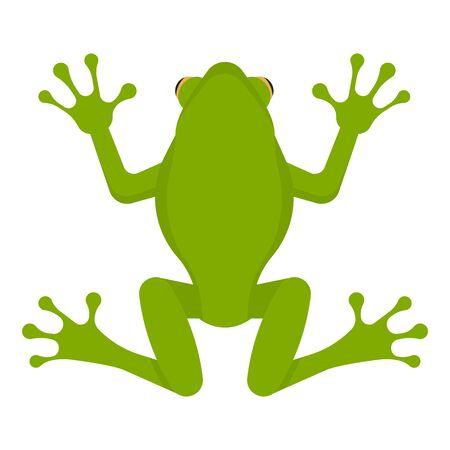 Green frog isolated on white background. Vector illustration. Eps 10. Imagens - 148097325