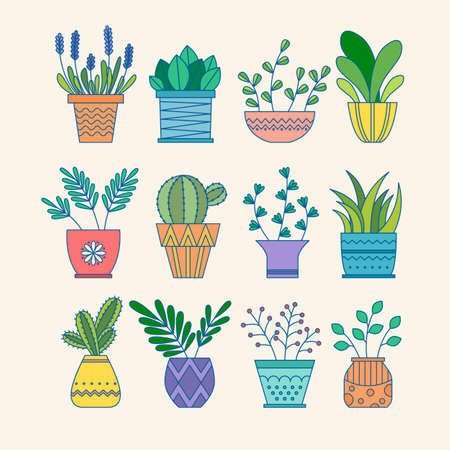 Set of colorful bright flower pots for house. Vector illustration isolated. Collection of modern flower pots and vases. Ilustrace