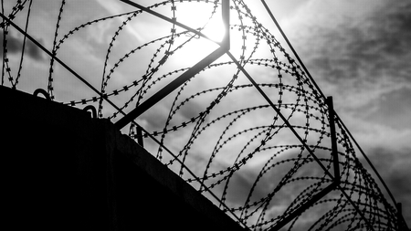 safeguarding: Barbed wire on the protective barrier. Prison boundary. Stock Photo