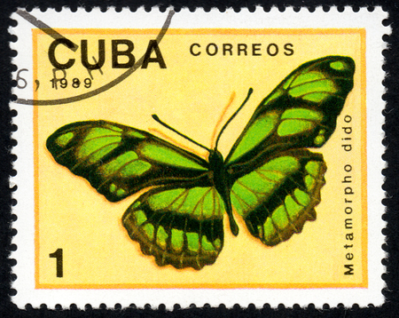 UKRAINE - CIRCA 2017: A stamp printed in Cuba, shows image of a butterfly Metamorpho dido close-up, circa 1989