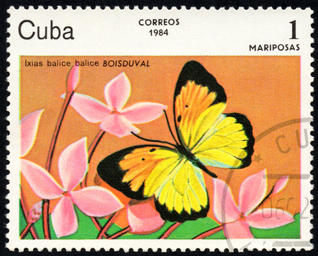 comprise: UKRAINE - CIRCA 2017: A stamp printed in Cuba, shows image of a butterfly Ixias balice balice BOISDUVAL close-up, circa 1984 Editorial