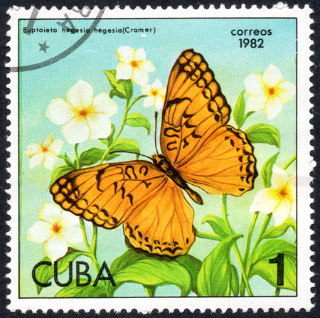 UKRAINE - CIRCA 2017: A stamp printed in Cuba, shows image of a butterfly Euptoieta hedesia hedesia (Cramer) close-up, circa 1982