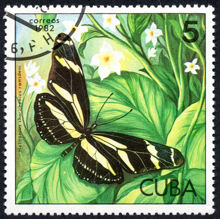 UKRAINE - CIRCA 2017: A stamp printed in Cuba, shows image of a butterfly Heliconius charithonius ramsdeni close-up, circa 1982