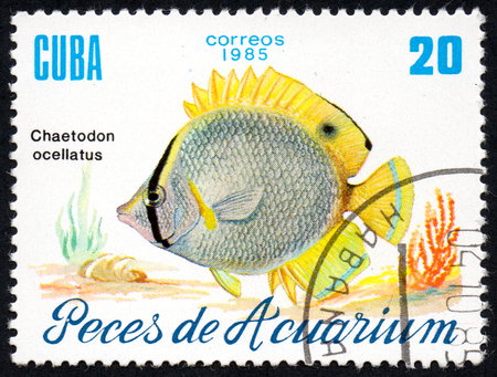 UKRAINE - CIRCA 2017: A stamp printed in Cuba, shows aquarium fish Chaetodon ocellatus close-up, circa 1985