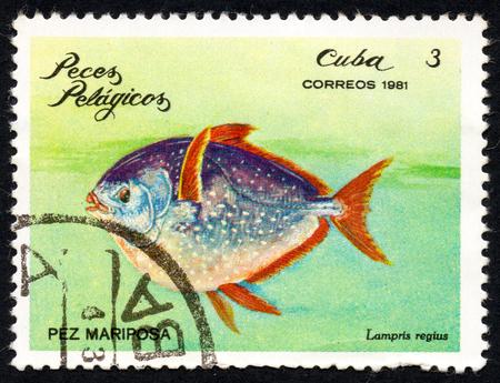 UKRAINE - CIRCA 2017: A stamp printed in Cuba, shows a Butterfly fish (Lampris regius) the series Pelagic Fish, circa 1981 Editorial