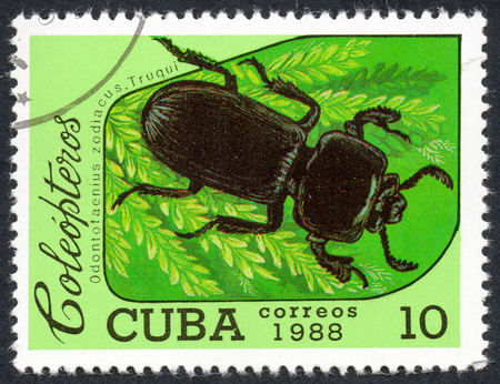 comprise: UKRAINE - CIRCA 2017: A stamp printed in Cuba, shows beetle Odontotaenius zodiacus. Truqui, the series Coleoptera, circa 1988
