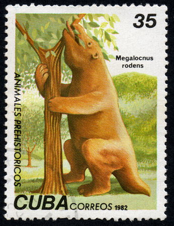 comprise: UKRAINE - CIRCA 2017: A stamp printed in Cuba, shows a extinct animal Megalocnus rodens, the series Prehistoric animals, circa 1982