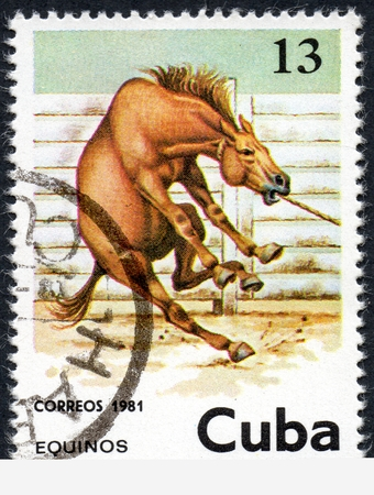 UKRAINE - CIRCA 2017: A stamp printed in Cuba, shows beautiful brown horse, the series Horses, circa 1981