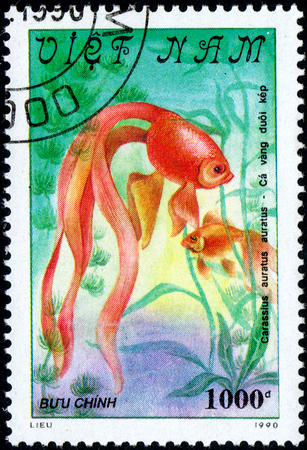 comprise: VIETNAM - CIRCA 2017: A Stamp printed in Vietnam shows beautiful fish Carassius auratus auratus, series Goldfish, circa 1990