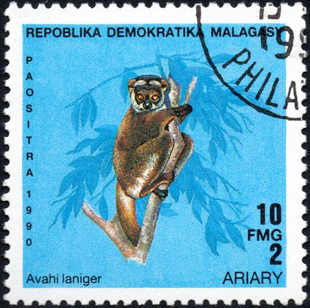 poststempel: UKRAINE - CIRCA 2017: A stamp printed in Malagasy Madagascar shows Lemur Avahi laniger, circa 1990
