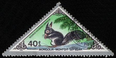 UKRAINE - CIRCA 2017: A postage stamp printed in Mongolia shows Red Squirrel Sciurus vulgaris, from series Various mammals, circa 1983 Éditoriale