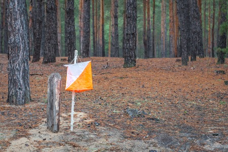 Orienteering. Control point Prism and composter for orienteering in the autumn forest.